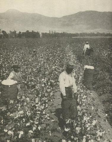 Slavery domination in southern life
