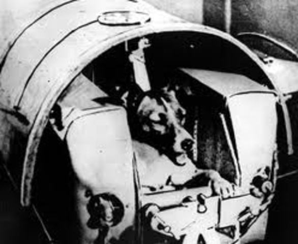 Laika, the dog goes into space