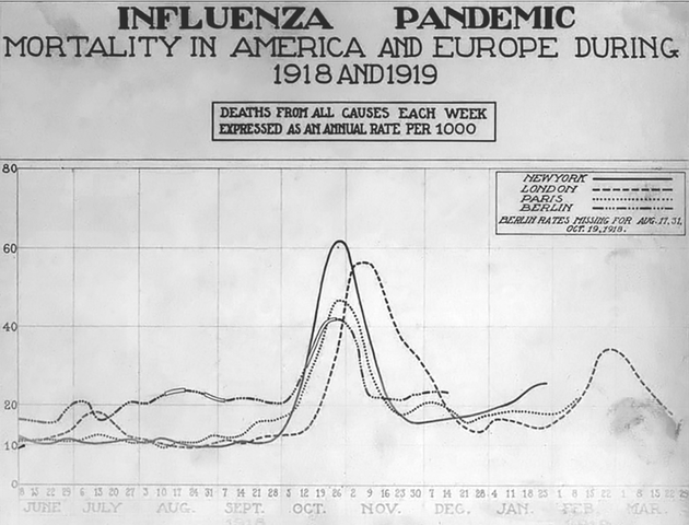 Influenza and Pneumonia Epidemic