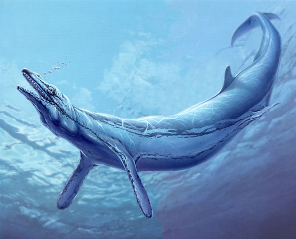 The Basilosaurus: 35-45 Million Years Ago