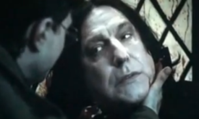 The Death of Severus Snape(cont.)