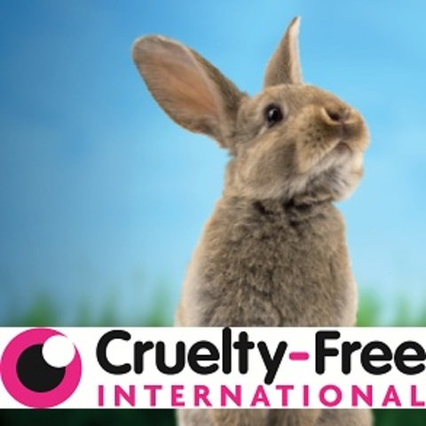 Britian Outlawed Cosmetic Testing