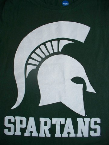 Michigan State University Undergrad