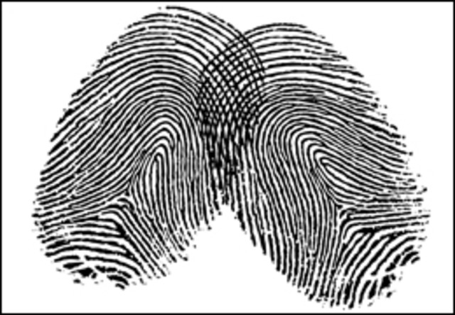 nature of fingerprints and their importance in solving crimes The first sign of science being used to help solve a crime goes back to time of archimedes  keep claiming their pension after their death fingerprinting soon became standard practice and is.
