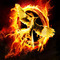The hunger games mockingjay1