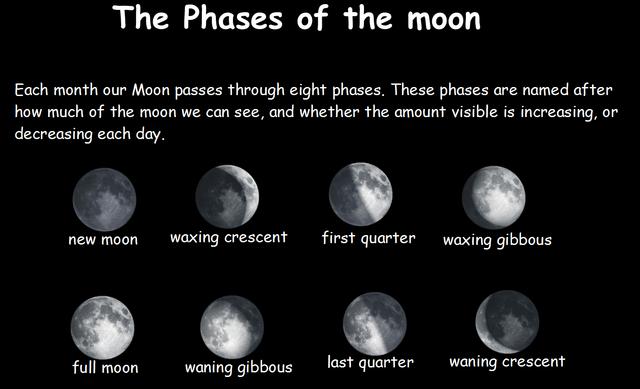 Moon Phases timeline   Timetoast timelines