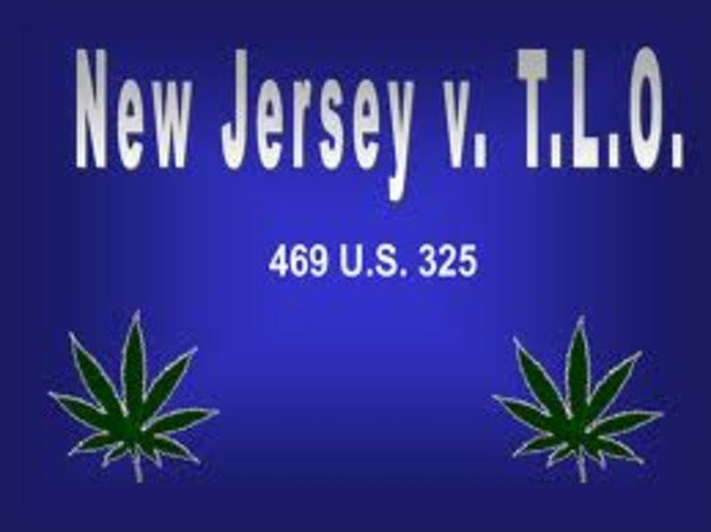 new jersey v tlo New jersey v tlo fourth amendment'0 the new jersey supreme court reversed it found that the search in question was unreasonable and ordered suppression of the evidence found in the purse.