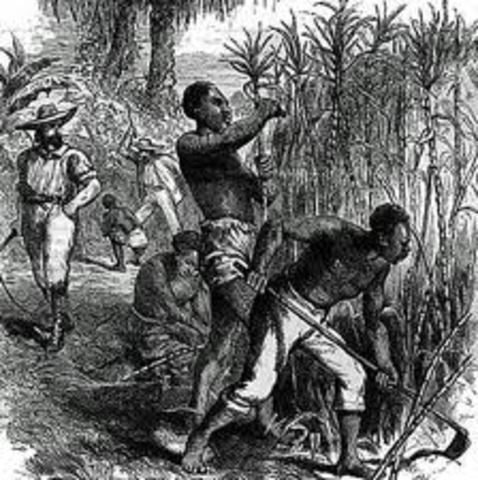 the need for slavery in the Slavery existed for thousands of years, in all sorts of societies and all parts of the world to imagine human social life without it required an extraordinary effort.