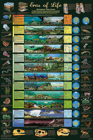 Geological Time Scale timeline | Timetoast timelines
