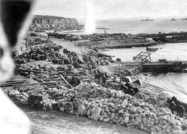 Allied troops landed in Gallipoli