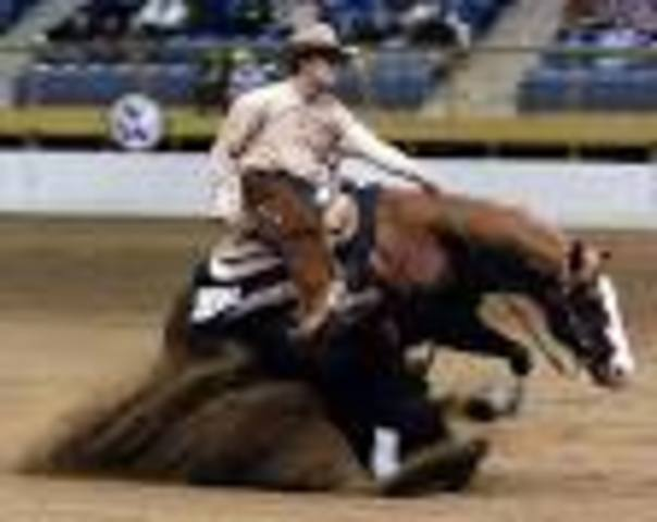 National Reined Horse Association