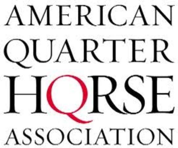 AQHA launches its first website