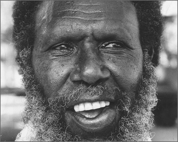 rights and freedoms of aboriginals Human rights of indigenous australians essay  this presentation focuses on charles perkins actions gaining rights and freedoms for australian aboriginals,.