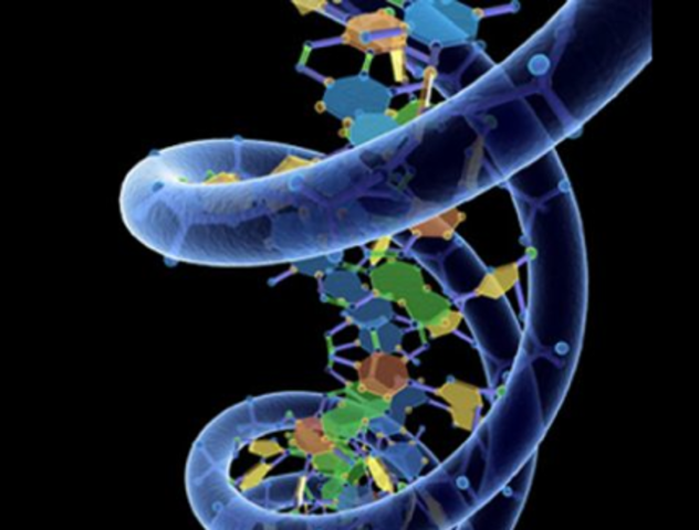 important events about dna Biology current events is our page about news and discoveries in biology it offers recent biology news and interesting current events in  mitochondrial dna.