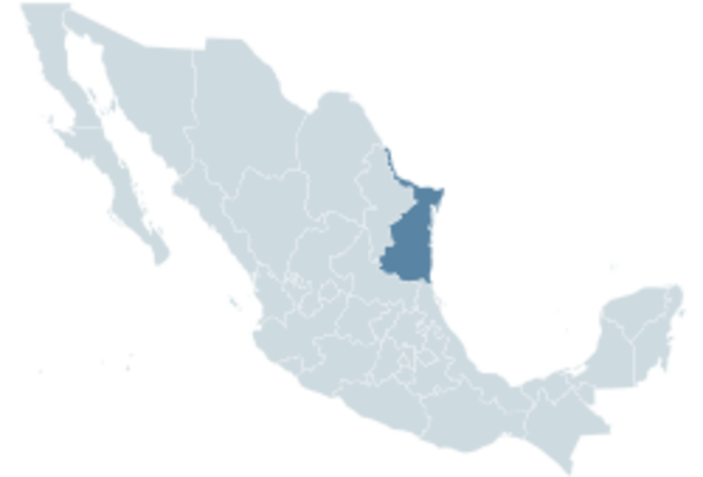 Occupation of Tampico, Tamaulipas