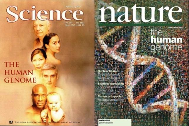 Proyecto genoma humano timeline timetoast timelines for En 2003 se completo la secuenciacion del humano