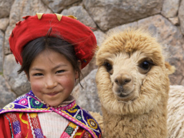 Alpaca wool as an Economic Resource