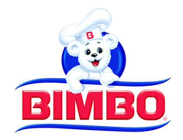 bimbo timeline timetoast timelines