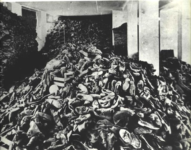 "a look at why some people described the holocaust as a hoax Almost no one understands that the holocaust hoax is the indispensable centerpiece of why these people don't want the holocaust"" can be described as."