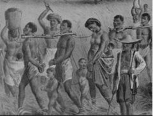 slavery and dutch colonies slaves Free essay: introduced to britain's north american colonies in 1619 by the dutch, the slavery of african natives did not become a notable source of labor for.