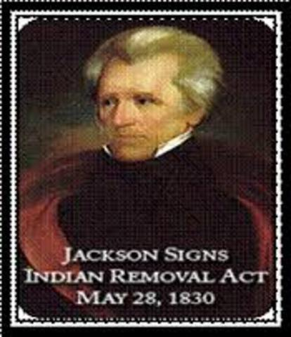 andrew jackson and indians essay Essay on andrew jackson who was seventh president of the andrew jackson essay the people defeated the indians who were supported by the spaniards and who.
