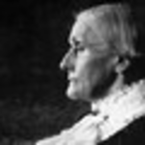 expansion of sufferage in the jacksonian Women and equality michael o'malley,  women's work became less crucial in the jacksonian era, as market goods increasingly replaced goods made in the home.