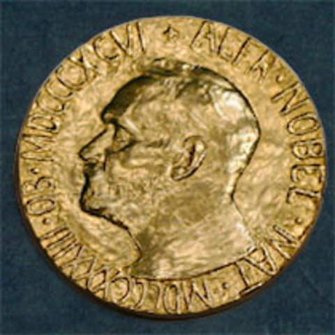Nobel Peace Prize Medal 1986 South Africa ti...