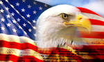 Us flag eagle  landscape