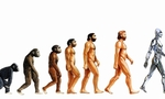 Human evolution  landscape