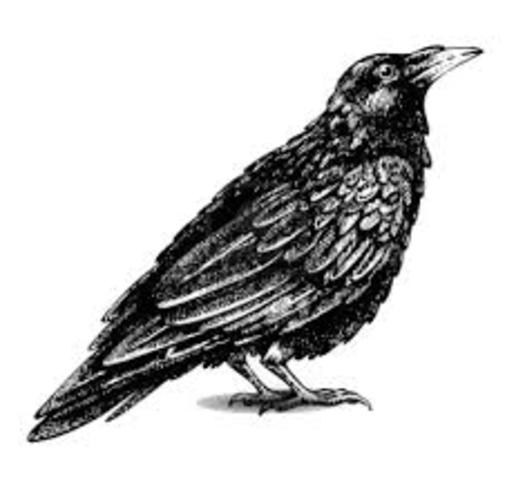 The Raven is Published