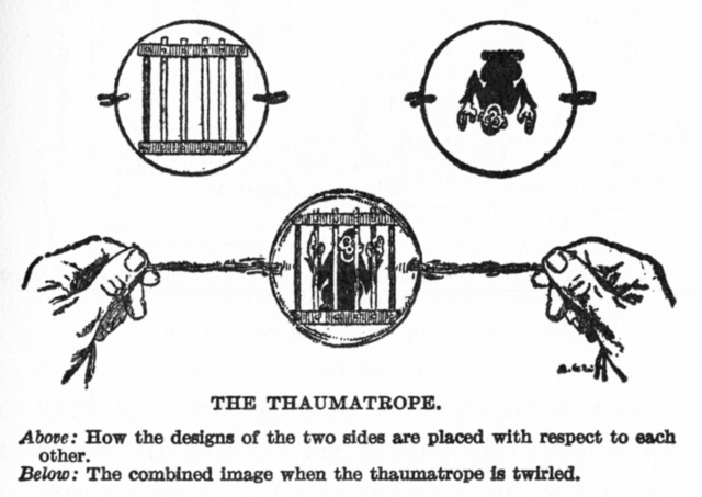 Invention of Thaumatrope