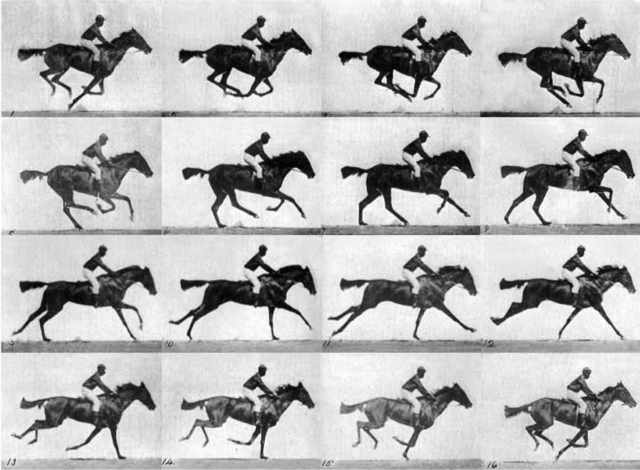 Eadweard Muybridge takes the first successful photographs of motion