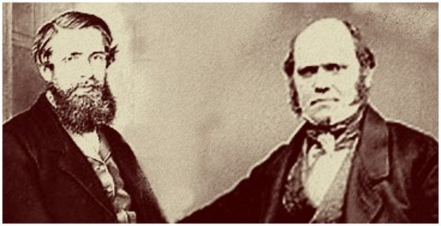 Darwin and Wallace present their theories on evolution