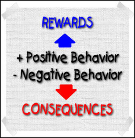 Behavioral Management Movement
