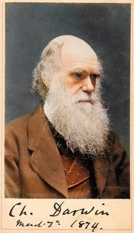Darwin writes about Enviroment