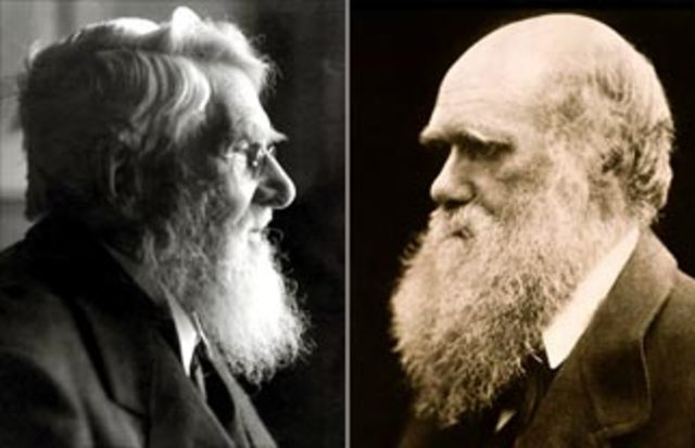 Wallace and Darwin publish papers on natural selection