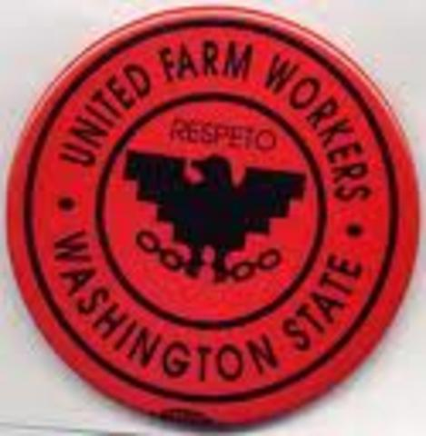 (3) United Farm Workers grape growers sign first union contract