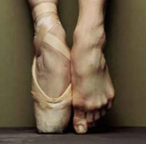 Ballet Establishment
