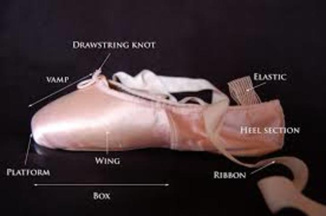 The parts of the Ballet Pointe Shoe