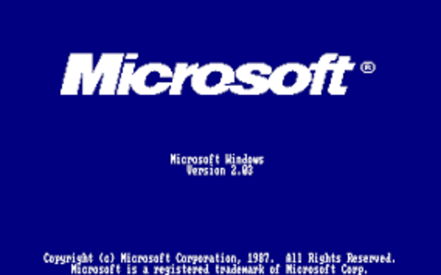 1988 WINDOWS 2.03