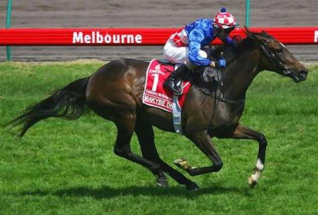 Three for Makybe Diva.
