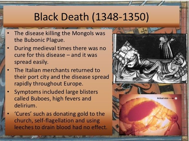 "the devastating effects of the black death in europe during the middle ages The effects of the black death during the middle ages  population,"" the  bubonic plague had devastating effects throughout europe (perry 189) it could  be."