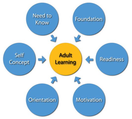 applying malcolm knowles andragogy model to Malcolm knowles adapted the theory of andragogy, teaching  adults want to learn what they can apply in the present, making training.