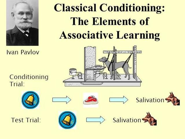 history and background on ivan pavlov • background – functionalism • ivan petrovitch pavlov chapter 9 behaviorism: antecedent influences 7 the influence of animal psychology on behaviorism cont.