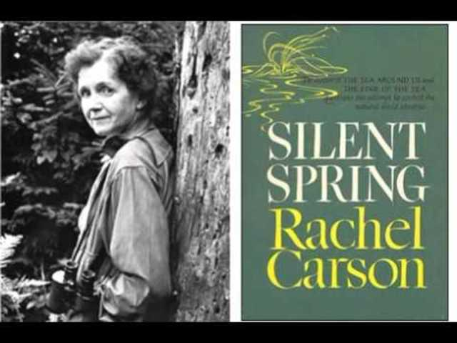 a reflection of the book silent spring by rachel carson Rachel carson's book focused on rachel's discoveries and efforts were brought to the forefront in her book, silent spring  (outdoor essays & reflections) mass.