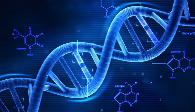 Discovery of DNA