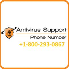 Antivirus Technical  Support's avatar