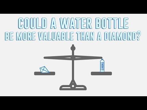 The paradox of value - Akshita Agarwal thumbnail
