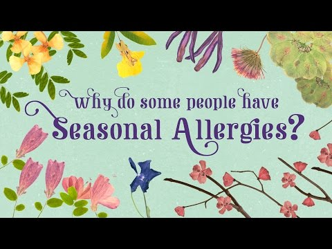 Why do some people have seasonal allergies? - Eleanor Nelsen thumbnail