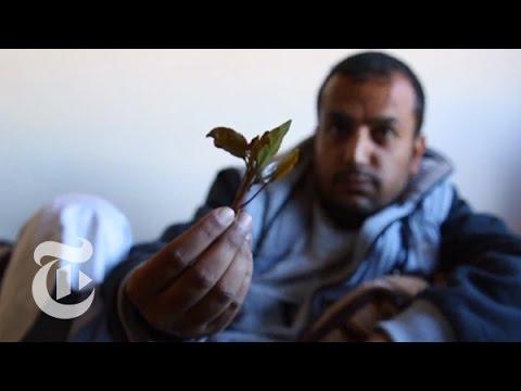 Inside a Yemeni Khat Session [BONUS SCENE] | Times Dispatched |  مشهد إضافي: في جلسة قات يمني thumbnail